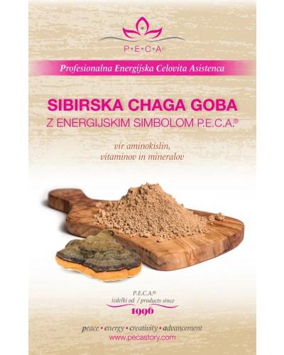 Sibirska chaga goba